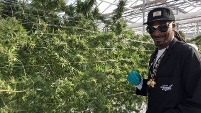 While Snoop Dogg was quick to launch cannabis brands...