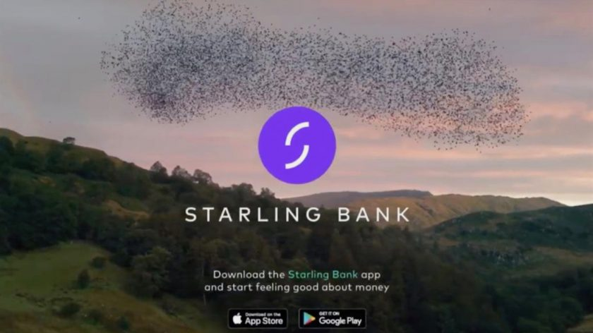 Murmuration in motion: Starling's homepage